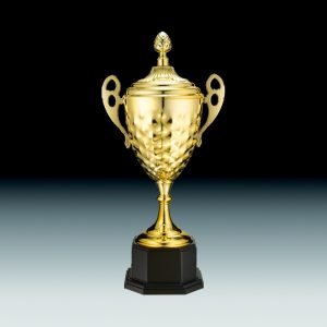 金屬獎盃,獎座,獎牌,擺件,獎杯,水晶,Crystal,廣告禮品,金屬獎盃